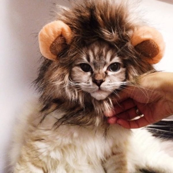Funny Cute Pet Cat Costume Lion Mane Wig Cap Hat for Cat Dog Halloween Christmas Clothes Fancy Dress with Ears Pet Clothes   2